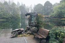 太子湾公园,最浪漫的事 太子湾公园在杭州的名气不如西湖这么大,是一个免费的公园。清早在这里游览,空气