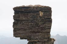 梵净山蘑菇石,因造型上大下小,酷似蘑菇而得名,是由风化、侵蚀后残留的层积岩所成,可以说是梵净山乃至贵