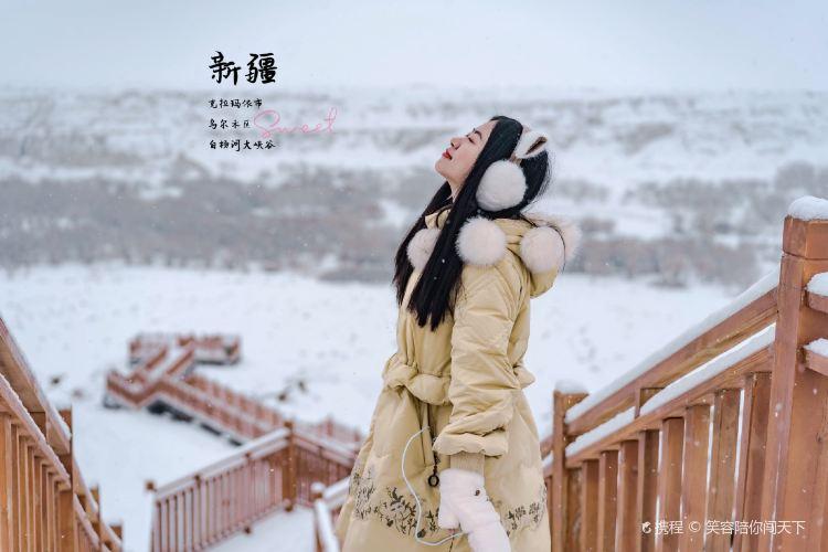 白楊河大峽谷4