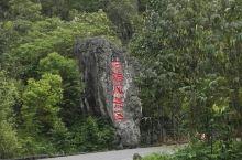 地质奇观-四川兴文石海世界地质公园石林景观          兴文石海世界地质公园位于四川省宜宾市兴