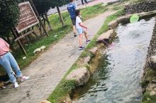 旅游有山有水的地方,就是孩子的乐园。