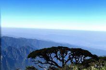 圣堂山是广西金秀县大瑶山的主峰,海拔达1979米,是华南最高的山峰之一。圣堂山不仅奇,而且是绿色的宝