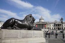 拥有2300多幅13-20世纪早期西欧名画的国家画廊        位于伦敦特拉法加广场的这个画廊,