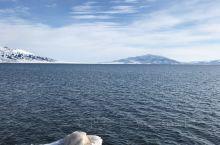 赛里木湖畔安静的美!