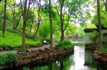 《来自攸县的诱惑:我真的想要去旅游……》  我是孤独浪子,希望我的拍拍让您有所收获。 漫游神州31载