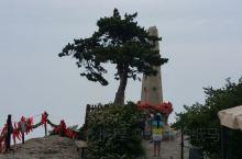 去华山,登上峰顶,你会注意到两座塔,是拍照的好位置。塔有近百年的历史,因杨虎城将军而建,被称作杨公塔