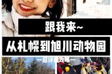 从札幌到旭川动物园怎么走?跟我来!  北海道旅行最便捷的居住地是【札幌】——北海道交通枢纽,四通八达