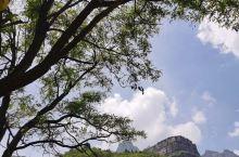 林州石板沟景区是一家免费的游览地方,原生态,这里植被丰富,是太行山很秀美的一个地方。