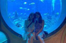 长这么大第一次去水族馆。真心很好玩,童心又长出来了呢。  在三亚看妹妹,周四的时候妹妹单独为了陪我去
