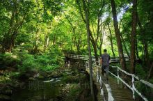 香炉山位于宾县南端,是距哈尔滨最近的天然大氧吧,香炉山风景区自然资源保持完好,主要景点有香山寺、黄仙