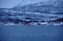 在特罗姆瑟追鲸鱼 同学在网上订的 1300rmb 早上8点发船 因为特罗姆瑟的交通实在是太不方便 公