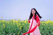 【最美油菜花·兴化·千垛】 3月踏春季最不容错过的是花海,在泰州兴化就有一处超级适合赏花的地方,那便
