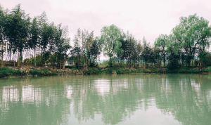 퉁루,추천 트립 모먼트