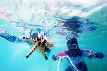 仙本那——潜水者的天堂  我们生活在地球表面,海平面以上 来到这个潜水胜地才发现原来水下的世界,别有