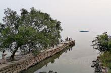 这个季节是苏州西山采杨梅的好季节,而前几周是刚过季的琵笆采摘时间,爬个山,采个杨梅,出出汗,再转转古
