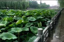 郑州紫金山公园