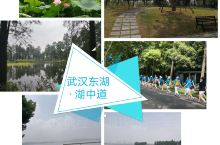 武汉东湖绿道,是只能骑行和步行的世界级绿道,湖心道是按国际自行车赛道来设计建设的。