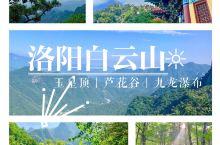 河南周边游:洛阳|白云山二日森林氧吧攻略  day1:郑州出发-洛阳白云山景区入口 :4-5h :白