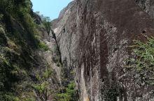 山、水、石、茶,清秀俊美,闲情逸致。