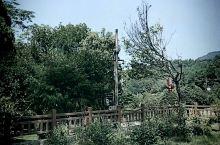 乌龙山农业观光园