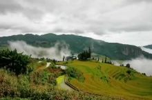 天阴的梯田也美,稻米香鱼儿鲜的季节到了