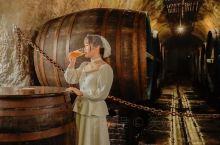 皮尔森之源啤酒厂是捷克最古老的啤酒厂之一,自1842年投产至今仍然在源源不断的生产啤酒。 在这里可以
