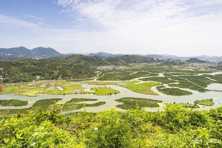 타오장스산주(도강십삼제)3