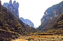 超小众景点 地质奇观 德夯大峡谷 写生来过,有纯朴的民风,有很多可爱聪明的会送我们的土狗,还有很可爱