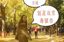 今年是新中国诞生70周年,北京作为首都肯定是热闹非凡,节目繁多。相信很多朋友都想怀着爱国之心到北京走