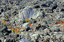 老黑山是五大连池典型火山之一,是14座火山中最高的一座。山势高耸,海拔515.9米,山顶有漏斗状火山
