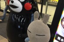 #逸香兔在異鄉# 熊本城熊本熊是我們去過熊本才喜歡上的。在北京已經深秋的時候那裡还可以露着腿穿着单衣
