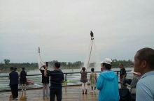 梅河口的水上乐园真是太有趣了,特别是水柱把人喷到空中的表演太精彩了