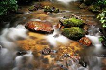 边境上的热带雨林,中缅边境的大山深处,藏着一处热带雨林,莫里瀑布带来的清凉,沿着山谷一直往下游流去,
