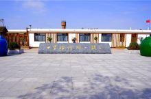 因河豚而名扬京津冀的小镇  曹妃甸的十里海河豚小镇是第二届国际河豚美食节的分会场。小镇因为游客营造了