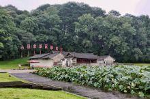 古田会议是中国共产党历史上的一次重要会议,它确立了人民军队建设的基本原则,核心内容党指挥枪,是党领导