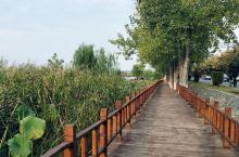 钟祥位于湖北省中部,楚文化的历史发源地之一,著名的明显陵,黄仙洞都是源于此。在靠近显陵的地方有一个很