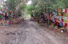 藏区唯一保留着神秘树葬习俗的地方……卓龙沟,位于波密县城南面六公里的一片原始森林里。卓龙在藏语中意思
