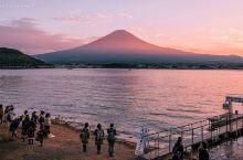 秋天装点下的富士山。 一生一次富士山,朦胧晚霞秋色感染它的静美,朝圣它的灵美。via.咱们一起去旅行