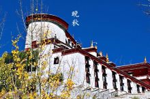初冬布达拉,秋色正浓郁。  金秋时节,拉萨布达拉宫在蓝天白云和绿树碧水的映衬下格外美丽,让人流连忘返