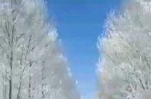 东北的冬 冬日不宅 自驾游