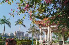 梅州城区,公园随拍。