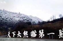 白马风景区即为四川白马王朗国家级自然风景区。位于