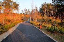 吉水·吉安  冬日暖阳,杨万里公园小憩后,到初具规模的城西吉水西站,气势恢宏!