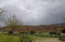 到这个地方说实话是挺意外的,他的景色非常的美漫山遍野挨着地面的小红花们,虽然天气是多变就是一会,晴一