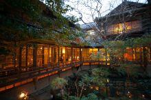 冬天的修善寺虽然没有郁郁葱葱的感觉,但也丝毫没有影响它安静,隐秘的感觉,菊屋是中国人去的最多的温泉酒