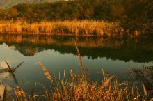 永嘉书院景区位于国家AAAA级楠溪江风景区核心区域。占地面积5000亩,是一个集观光旅游、休闲度假、
