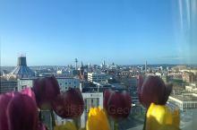 冬季的利物浦,公寓内温暖如春,郁金香美美开放,远眺利物浦全貌,蓝天白云,大海碧波。