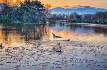 """带一卷书, 走十里路, 选一个清净地, 看天,听鸟,倦了时, 和身在草绵绵处寻梦去。  毕淑敏说:"""""""