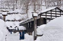 秋田县是日本东北地区的一颗明珠,那去年获得全世界外国人最喜爱温泉第一名的就是这里啦,乳头温泉乡。一年