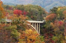 鸣子峡赏枫  位于宫城县的鸣子峡为大谷川长年累月刻蚀而成的壮观大峡谷,是东北地区着名的赏枫景点。每年